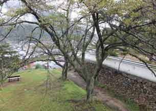 DSCF3946.JPG