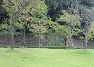二ノ丸石垣5939.JPG