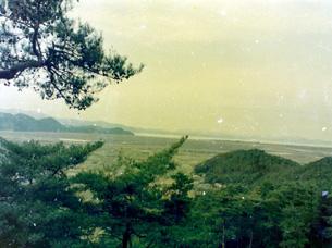 八角平より望む旧弁天内湖38-4.JPG