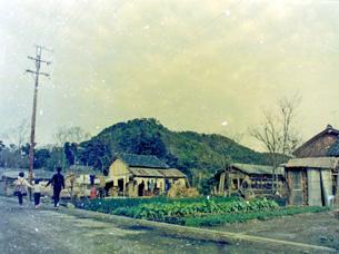安土山(安土城址)遠景38-1.JPG