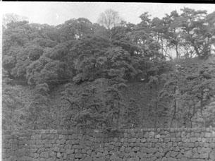 平川濠付近の石垣019.JPG