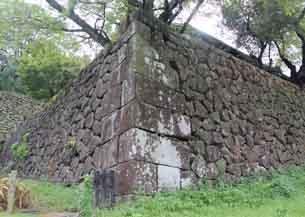 東ノ丸北面石垣5826.JPG