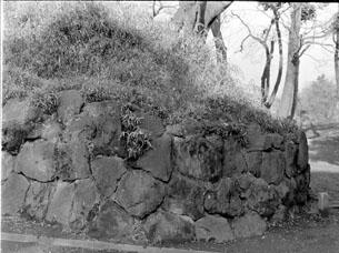 石垣009.JPG