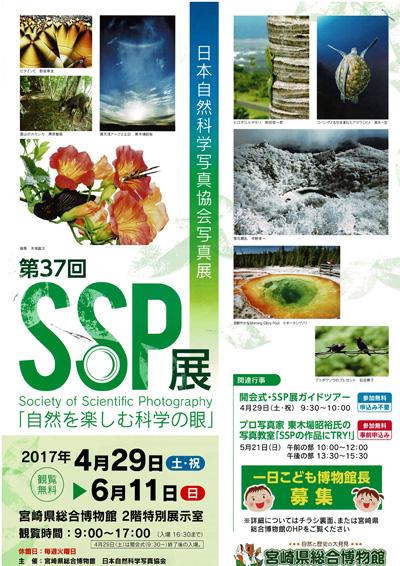 SSP展.jpg