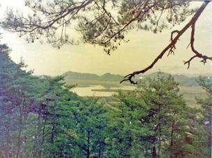 天守台より望む弁天内湖38-2.JPG