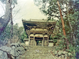 総見寺仁王門38-6.JPG